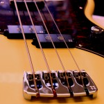 _Bass02